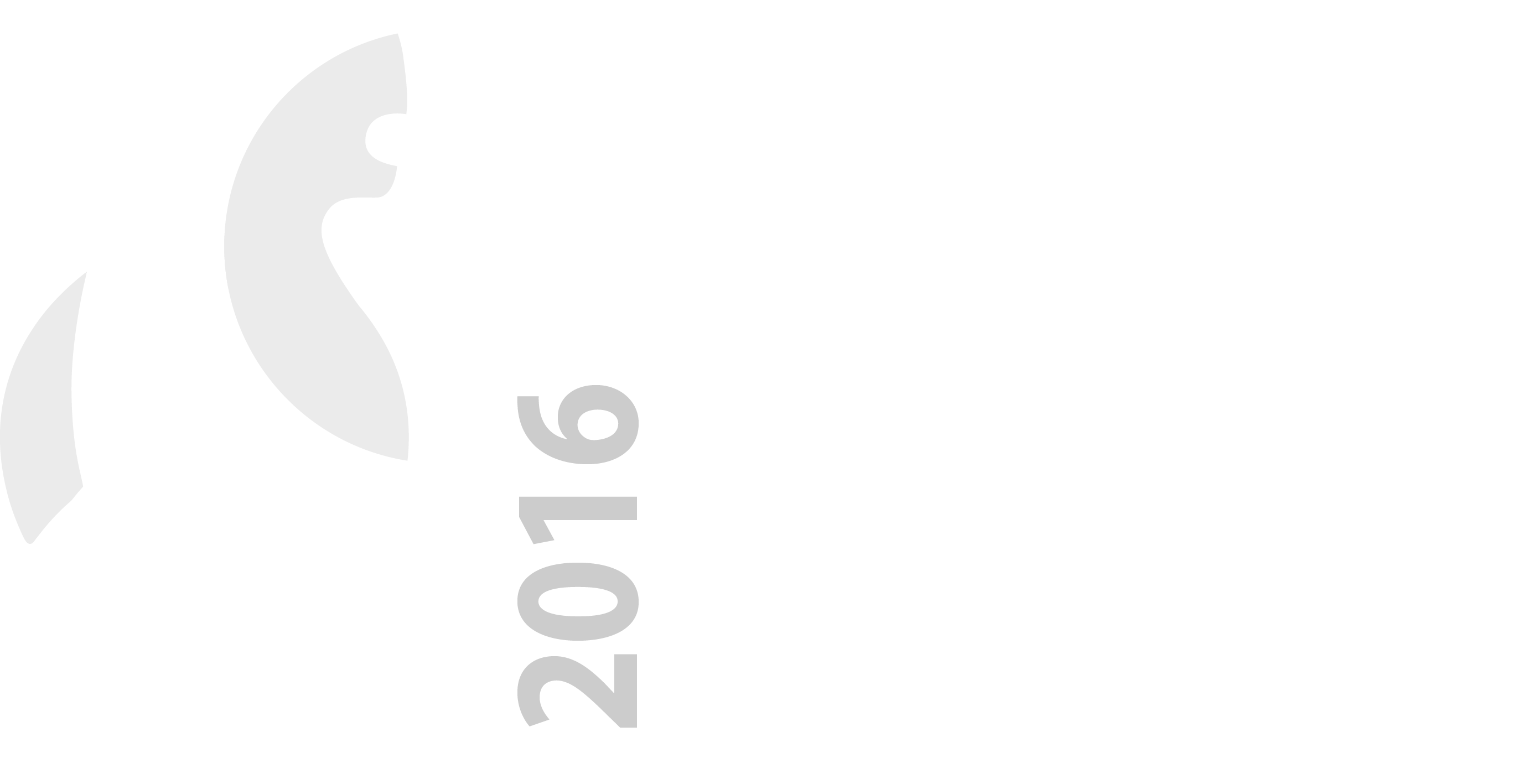 charity initiative big bear digital big bear charity logo 2016 reversed nobg png